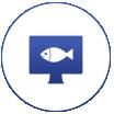 钓鱼网站自动分析